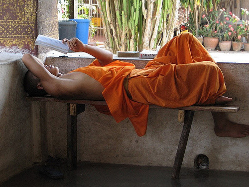 1494484064-7729-studying-monk-640px